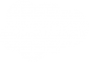 salesforce-newlogow