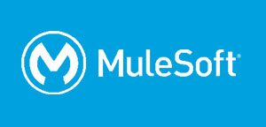 case-study-Mulesoft-300×144